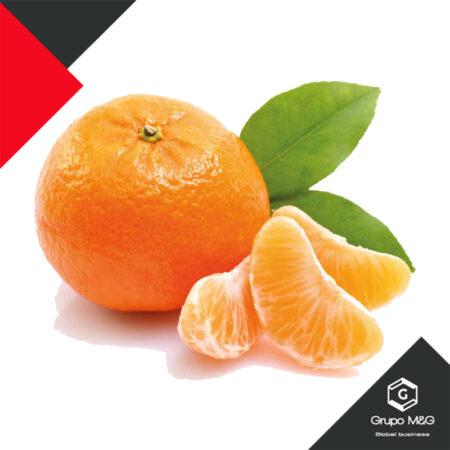 Mandarina pareja 10 Unidades