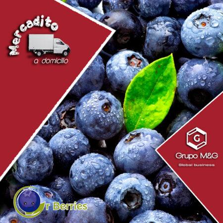 Arándanos Orberry Pres. 125gr – 250gr – 500gr