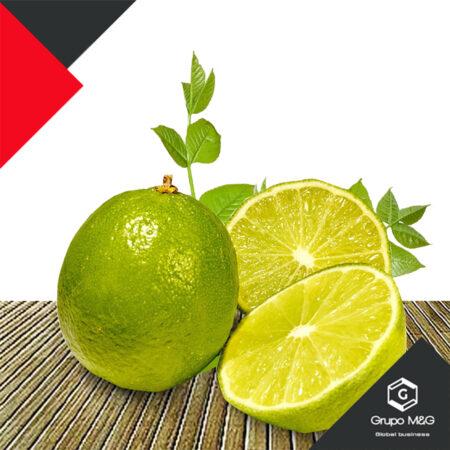 Limón Meyer Grande 10 unidades